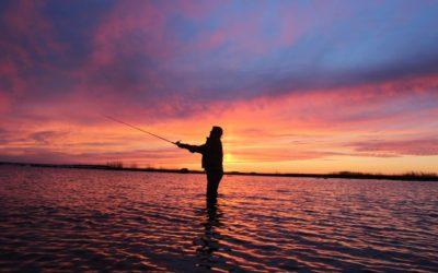 Госдумой РФ утвержден новый закон о любительской рыбалке.
