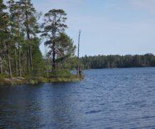 На охоту и рыбалку в Карелию