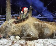 Охота на лося, закрытие сезона.
