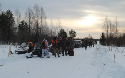 Я сбился со счета или волки в Костромской области.