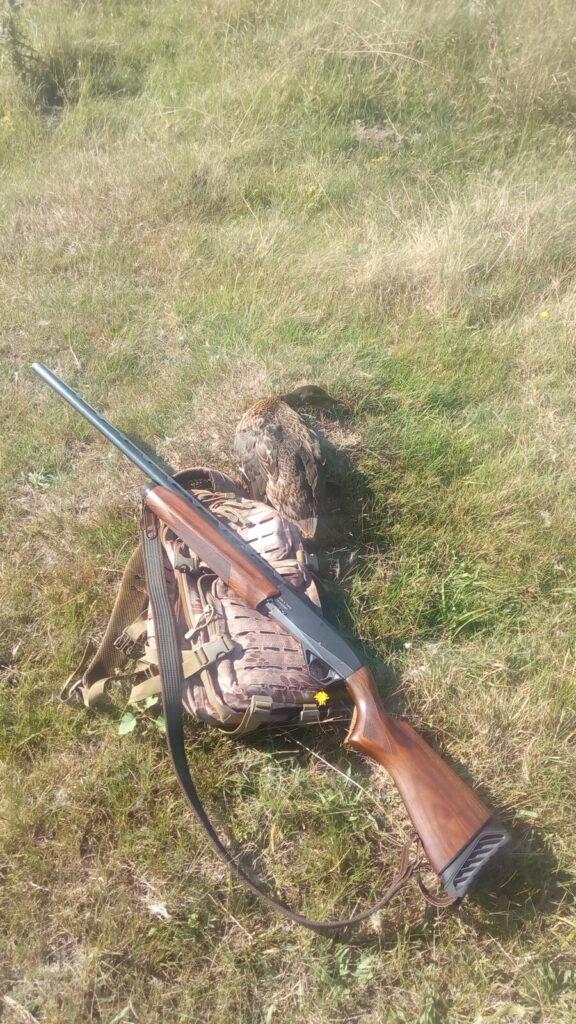 На охоту за утками...