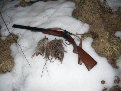 Охота весной....