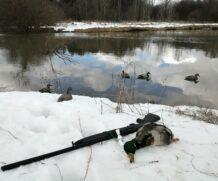 Моя первая весна на охоте…
