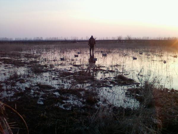 Весенняя охота в Липецкой...